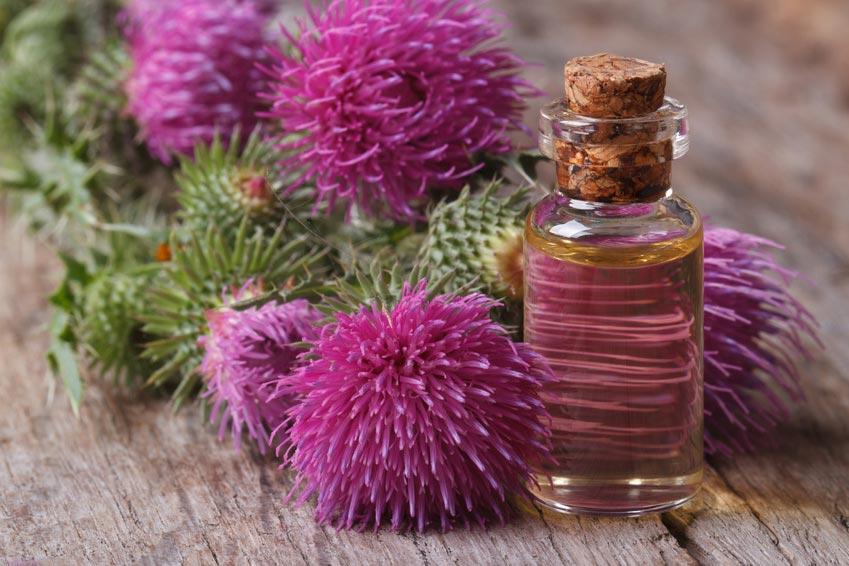 Takiaisesta saatava takiaisuutetta ja takiasöljyä käytetään luonnonkosmetiikassa ihon- ja hiustenhoidossa