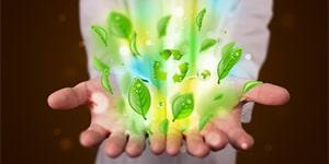 Waku Organics mediassa tuotteet ja ainesosat