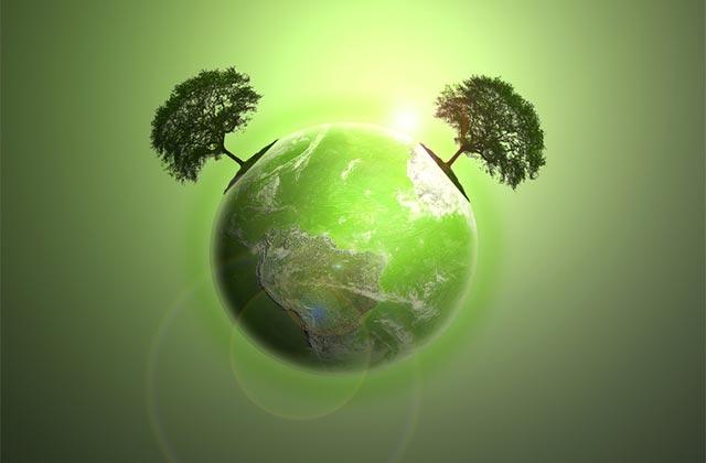 Luonnonkosmetiikka on ympäristöystävällinen ja ei rasita luontoa